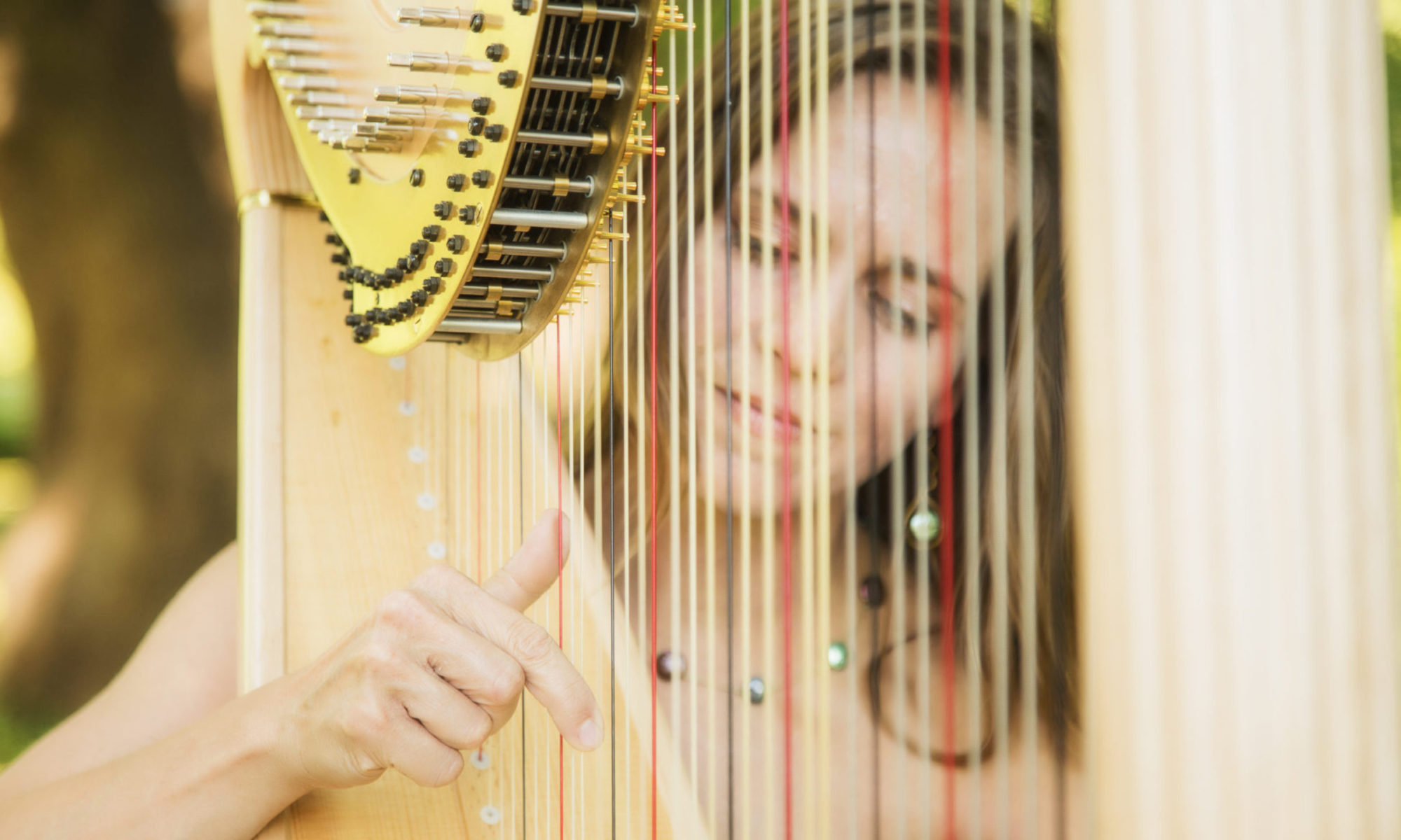 The Professional Harpist, LLC